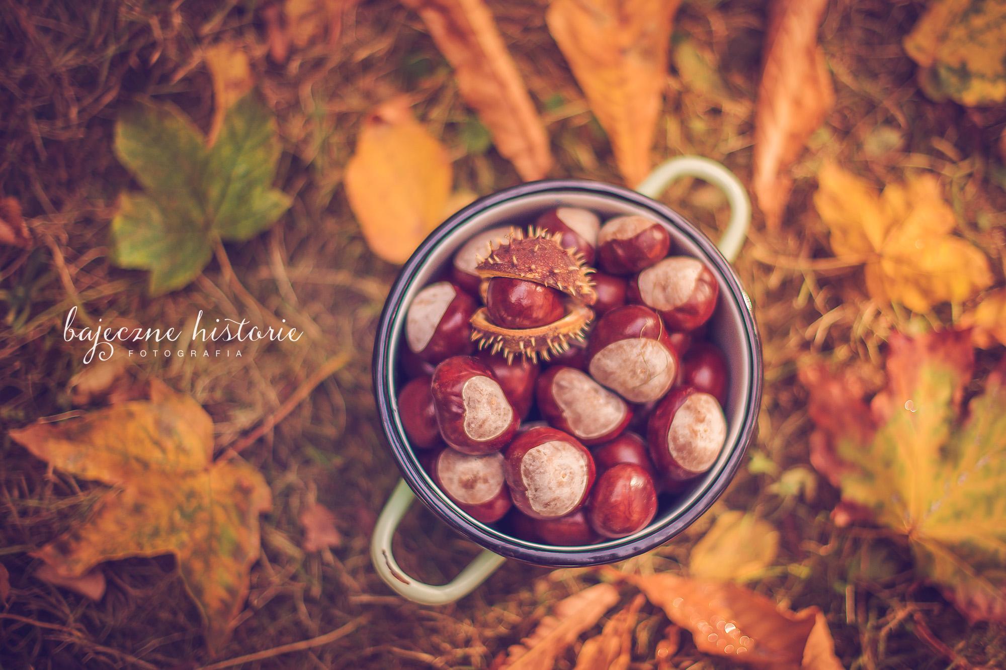 jesienny_spacer-16